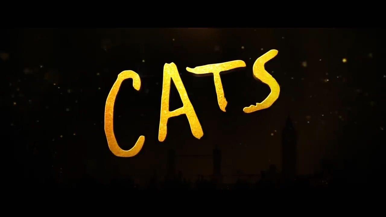 Cats update