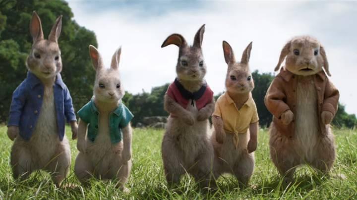 Peter Rabbit 2-ის სურათის შედეგი