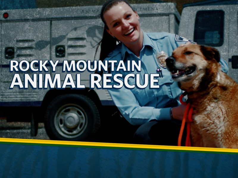The Rocky Mountain Animal Rescue