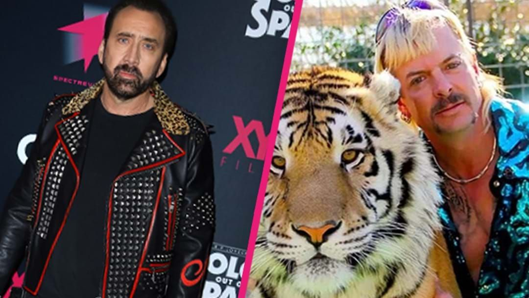 The New Tiger King Show to Feature Nicolas Cage as Joe Exotic