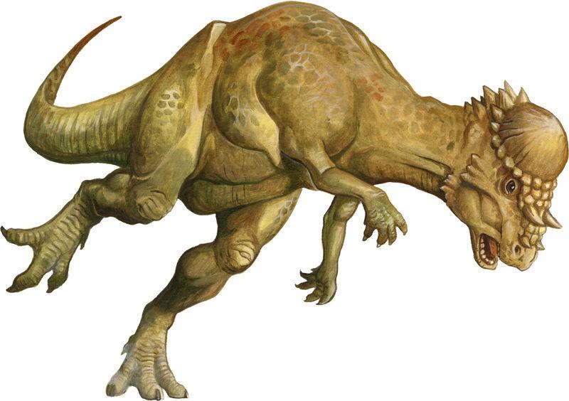 Pachycephalosaurus Dinosaur One Piece