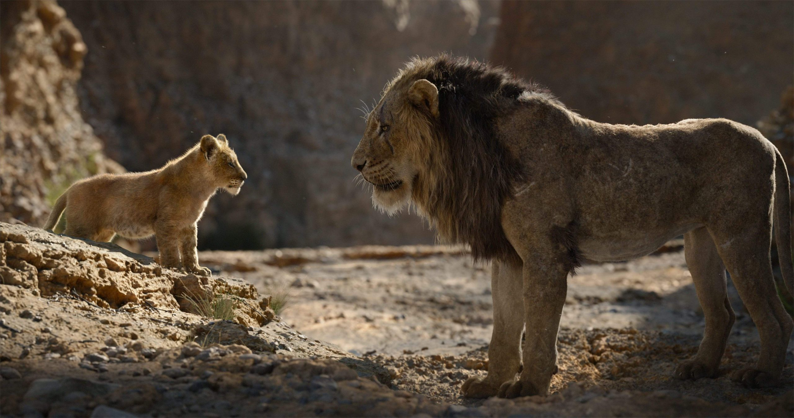 The Lion King Remake Sequel gets a new director