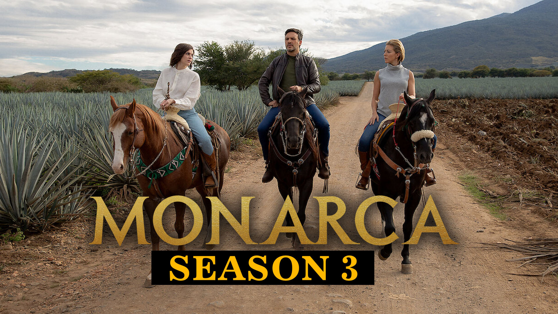 Will Netflix Renew Monarca For The Third Season? All You Need To Know