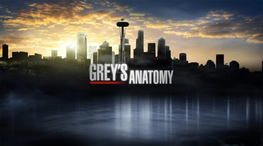 Grey's Anatomy Season 18: Will Shonda Rhimes Create A New Season In This Series Or Not?